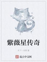 紫薇星传奇全文免费阅读