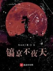 镐京不夜天全文免费阅读