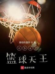 nba之篮球天王全文免费阅读
